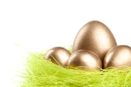 chucky: Golden eggs are in the nest of sisal filler, isolated on white Stock Photo
