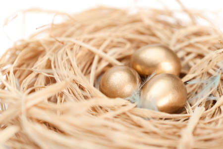 the feast of the passover: Nest with tiny golden quail eggs, isolated on white Stock Photo
