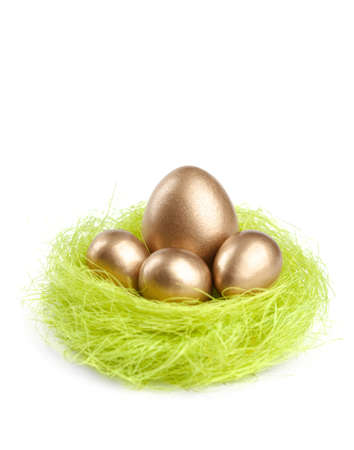 chucky: Golden eggs are in the nest of green sisal fibre, isolated on white
