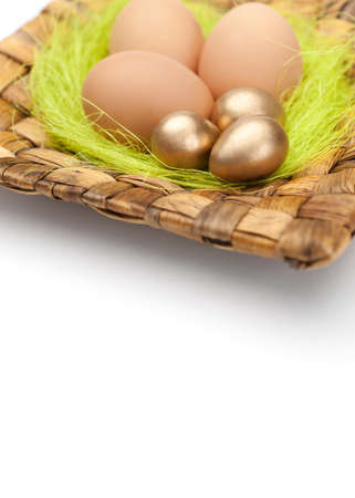chucky: Brown and golden easter eggs are on square plate with sisal green fibre, isolated on white