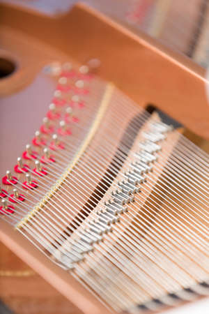 avocation: Close up of piano chords. Concept of music and creative hobby