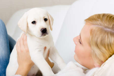 Close up of woman in white sweater holding white puppy of Labrador Standard-Bild