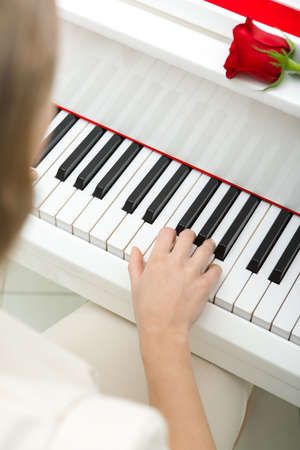 Close up of female hand playing piano and red rose lying on it. Concept of music and art Stock Photo - 24481057