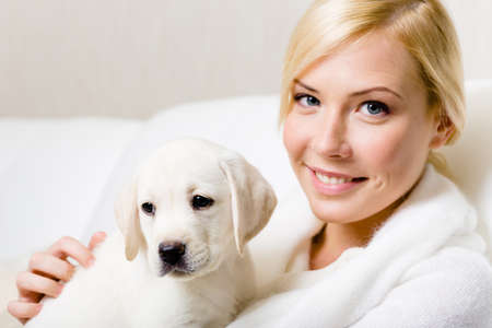 Puppy of Labrador sitting on the hands of woman photo