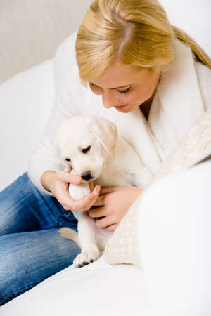 Woman plays with white puppy of Labrador on the white leather sofa photo