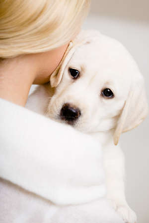 Back view of woman in white sweater embracing puppy of labrador photo
