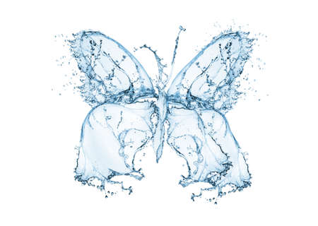 Butterfly water splash, isolated on white photo