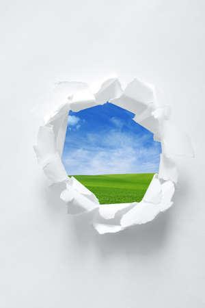 curled edges: Foro di carta con sfondo la natura. Focus su bordi arricciati di carta