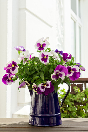 Bouquet of purple pansies in blue enamel-jug on a balconytable, white backrround, copyspace