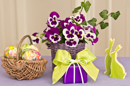 Easter decoration in green-purple with multicolored eggs, present, bunnies and pansy bouquet, copyspace photo
