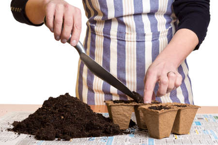 Hands of a woman filling soil with a shovel into peat pots, isolated on white photo