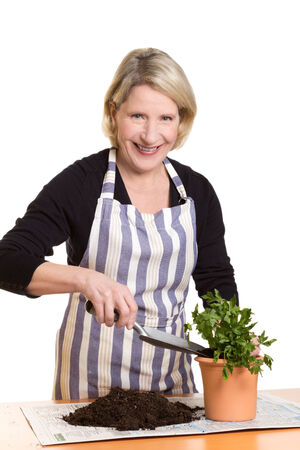 Laughing woman filling soil in a flower pot with parsley, copy space, isolated photo