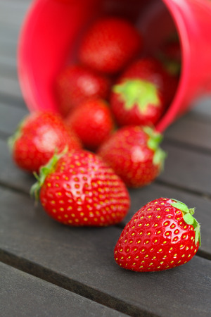 appetising: Strawberries in and beside a red bucket on a dark wooden table background, copy space Stock Photo