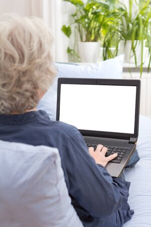 Senior woman with gray hair sitting with laptop on the sofa of her living room, blank, white monitor screen, rear view, copy or text space 免版税图像