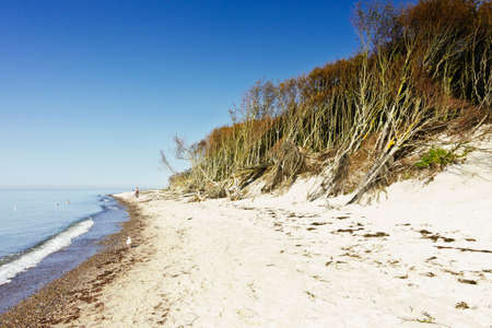 The natural and nearly empty beach Weststrand on the west coast of the Fischland-Darss-Zingst peninsula in Germany