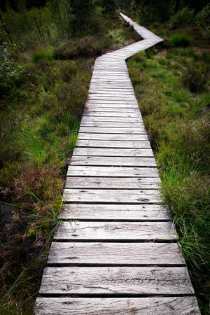 Change course concept: a wooden walkway with a kink or bend over the moor Pietzmoor in northern Germany.