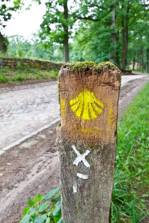 Yellow shell symbol on a wooden hiking trail marker in Wilsede, Germany, for the german part of the Camino de Santiago, or german Jakobsweg. Banque d'images