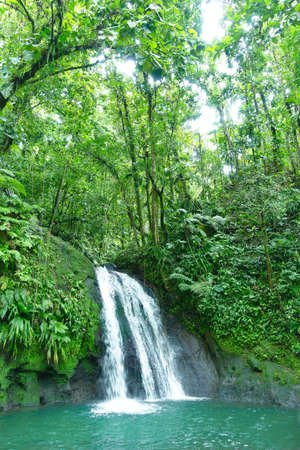 Crayfish Waterfall or La Cascade aux Ecrevisses, at the National Park of the french caribbean island Guadeloupe, West Indies.