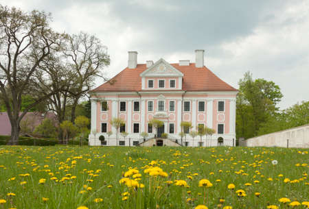 gro: Schloss Gro? Rietz with dandelion in the foreground Editorial