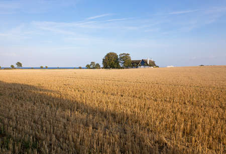 stubble field: Stubble field with house at the Baltic coast
