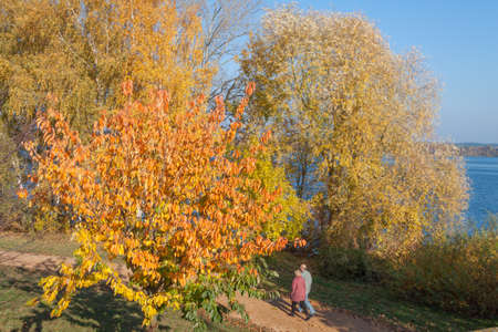 migrate: Spaziergnger on the park path with autumnal trees