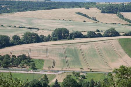 fields and meadows: Los campos, prados y calles cerca Muehlberg Foto de archivo
