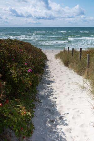 beach access: Sandy beach access Ristinge beach, Langeland
