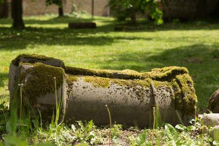 expiration: Fallen pillar with moss