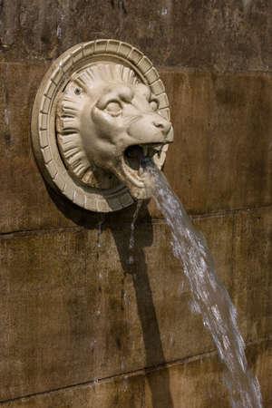 gargoyles: head of a lion serves as gargoyles Stock Photo