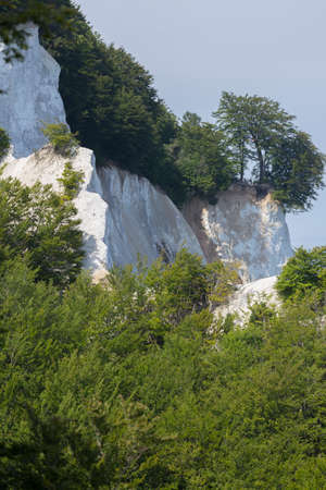 copse: Limestone lined up on the coast of Moen Klint Denmark Stock Photo