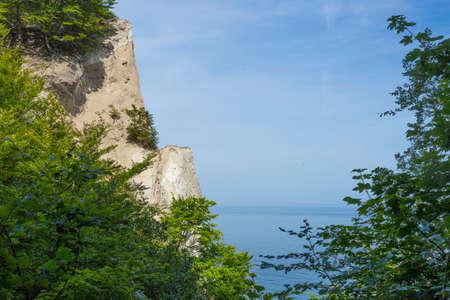 ledge: Ledge of limestone cliffs of Mons Klint Denmark