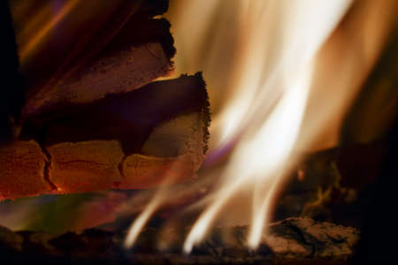 cinder: Close view of a burning wood and a cinder Stock Photo