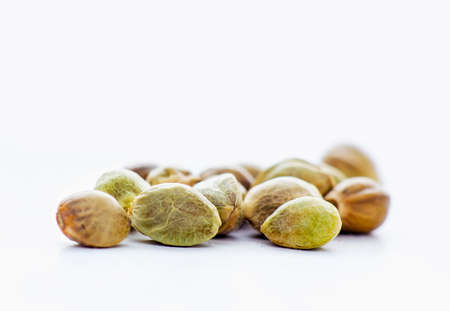 Close view of hemp seeds in a white background Imagens