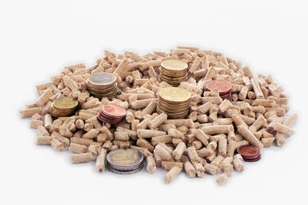 wood pellets: Euro coins and wood pellets in a white background