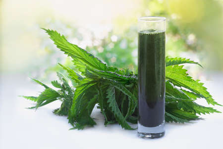 Green raw nettles and a smoothie made of nettles juice in  a glass
