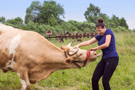 agricultural machinery: Smiling woman and a cow in a meadow with agricultural machinery in summer time