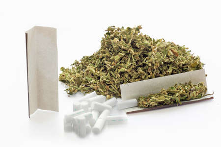 rolling paper: Dried hemp leaves  and cigarettes rolling paper and filters on a white background