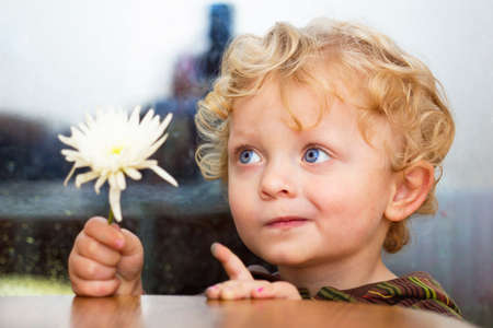Little caucasian boy with blue eyes and curly hair with  white flower in his hand Imagens
