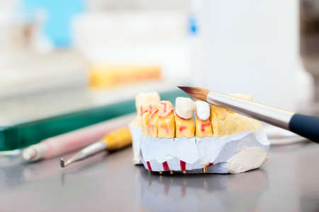 prothetic: Technical shots of model on a dental prothetic laboratory  with accent in brush and teeth model Stock Photo