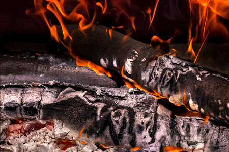broil: Close view of a burning wood and a cinder Stock Photo