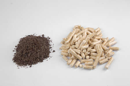 wood pellets: Conifer wood pellets and their ash on a white background