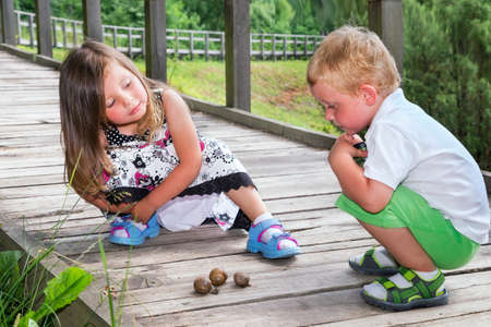 Little brother and sister looking at three snails on a wooden track
