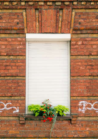 red shutters: Red brick wall and window with rolling shutters and flowers