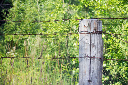 barblock: Close view of wooden pole with barbed wire Stock Photo
