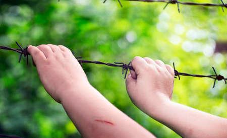 De handen van het kind op een roestig prikkeldraad op een zonnige groene onscherpe achtergrond
