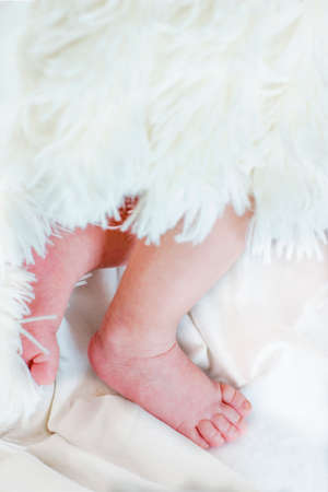 baby's feet: Close view of babys feet in a blurred background