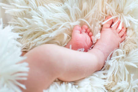 baby's feet: Close view of babys feet in a white cloth