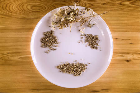 White plate, dried leaves of hemp and hemp seeds in yellowish wood background to form a smiling face allusion Stock Photo
