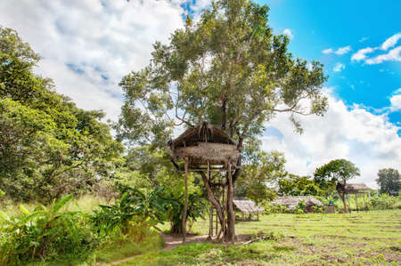 Small wooden house in a tree in Sri Lanka Stock Photo