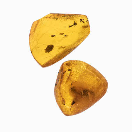 Piece of amber with insects inclusions. Isolated on white. Close up.
